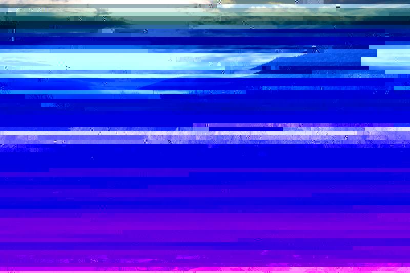 DSC_0091-2